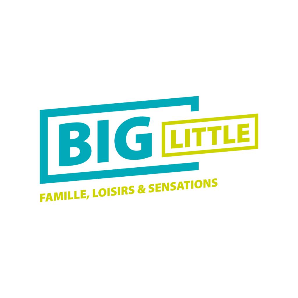 47298-big-little